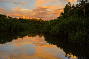 Orange clouds on the blue sky reflected in the river near the dark trees (Kumai, Indonesia)