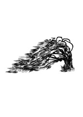 Curved tree. Black silhouette tree on white background. New Zealand tree. Grapfic art.