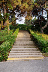 staircase in park