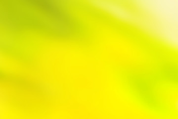 Blurred green and yellow background