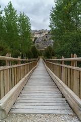 Wooden bridge, door to the nature.