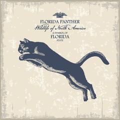 Пума, животное Америки, ситмвол штата Флорида, винтаж