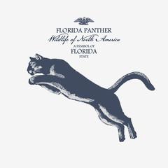 Пума, животное Америки, ситмвол штата Флорида