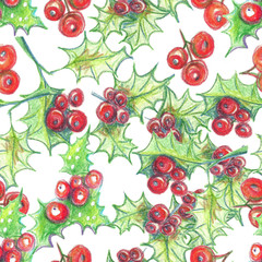 Hand drawn watercolor pencils seamless pattern, Christmas arrowhead plant, red holly berries.