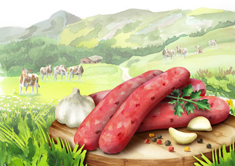 Raw sausage for barbecue with spices,  lettuce and tomatoes on a plate  in landscape with cows. Watercolor