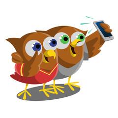 Owl selfie with smartphones