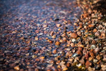 Colorful pebbles on the shoreline