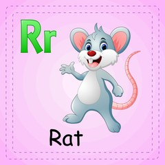 Animals alphabet: R is for Rat
