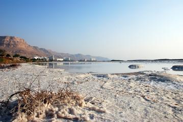 Salty coast. Dead Sea, Israel.