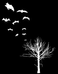 bare tree and flying bats isolated on black