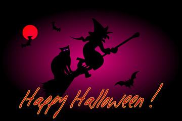 witch, hag, harridan,