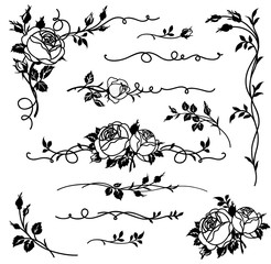 Set of vector calligraphic elements for page decor, floral dividers and ornaments. Vintage flowers and roses