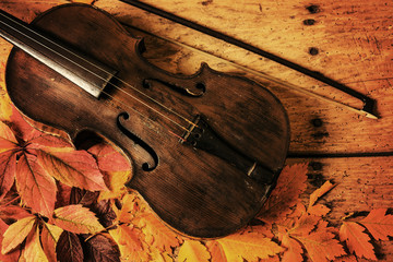Old violin and autumn leaves over an old rustic wooden table
