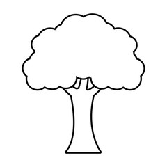 tree plant forest monochrome isolated icon vector illustration design
