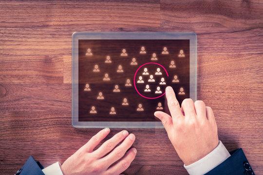Target audience and market segmentation