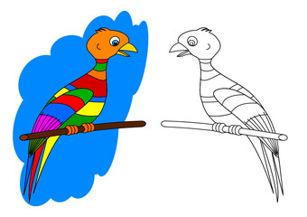Colorful bird on a perch like a coloring book for young children - vector svg