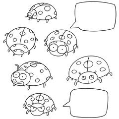vector set of ladybug