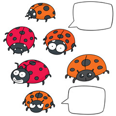 vector set of ladybug