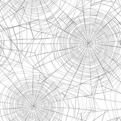 Halloween seamless pattern. Spider web background.