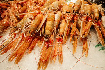 Fresh prawns at Boqueria market in Barcelona, Spain