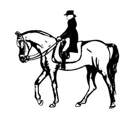 Rider walks a horse