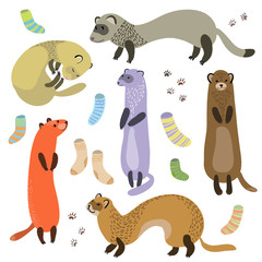 ferret, socks and paw prints vector illustration.