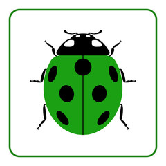 Ladybug small icon. Green lady bug sign, isolated on white background. Wildlife animal design. Cute colorful ladybird. Insect cartoon beetle. Symbol of nature, spring, summer. Vector illustration