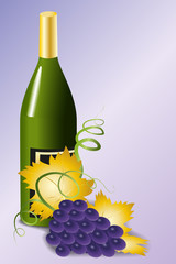 Bottle of wine and blue grapes