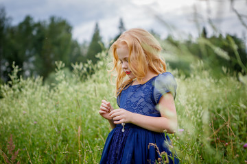 Portrait of beautiful little girl in the blue dress on the nature