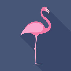 Flamingo flat icon on isolated transparent background.