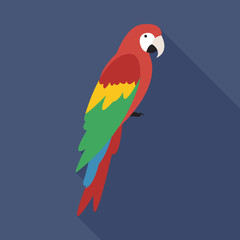 Parrot flat icon on isolated transparent background.