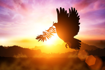 Silhouette of Dove carrying olive leaf branch