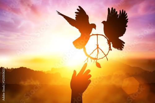 Foto em tela Silhouette of one hand desire to peace sign shape