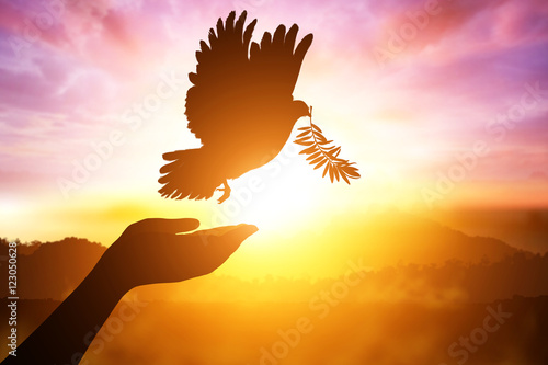 Foto em tela Silhouette of one hand desire to Dove carrying olive leaf branch