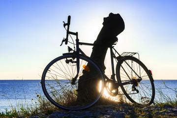 Bike in backlight