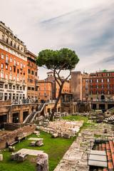 Largo di Torre Argentina à Rome