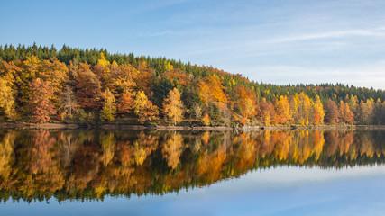 Herbst am Frankenteich im Südharz