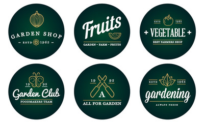Set of Vector Garden and Farm Elements and Fruits or Vegetables