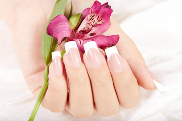 Hand with long artificial french manicured nails and lily flower