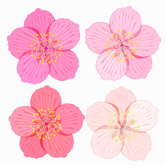set of Sakura is flower. illustration