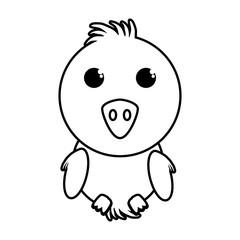 chicken little animal farm isolated icon vector illustration design