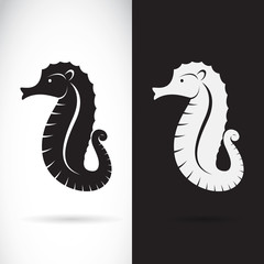 Vector of a sea horse design on white background and black backg