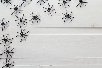 Many black spiders on the white wooden boards. Background for Ha