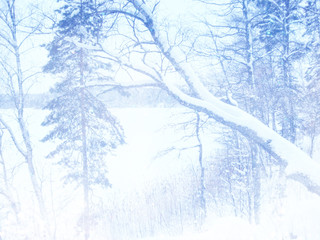 Dreamy and abstract magical winter landscape