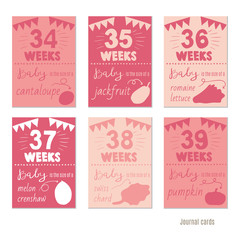 pregnancy 34-39 weeks Vector design templates for journal cards, scrapbooking cards, greeting cards, gift cards, patterns, blogging. Planner cards. Cute doodle. Printable templates set.