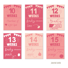 pregnancy 10-15 weeks Vector design templates for journal cards, scrapbooking cards, greeting cards, gift cards, patterns, blogging. Planner cards. Cute doodle. Printable templates set.