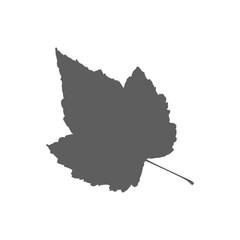 Leaf silhouette illustration