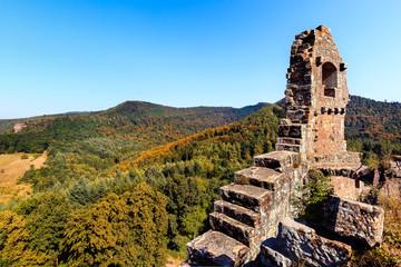 Wall Mural - Festung Fleckenstein
