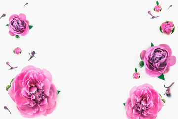 Isolated peonies on the white background for your web sait. Top view. Desktop, template card, Mock up for your photo or text. Place your work.