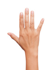 Open woman hand or number five isolated
